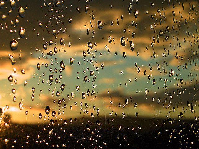 Glisten: Nature, Autumn, November Rain, Backgrounds, Summer Rain, Raindrop, Marc Depul, Photography, Rain Drop