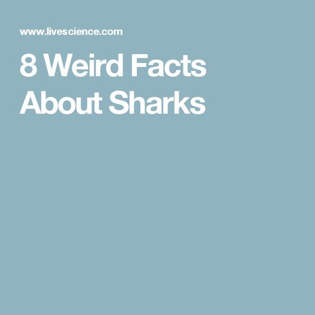 8 Weird Facts About Sharks
