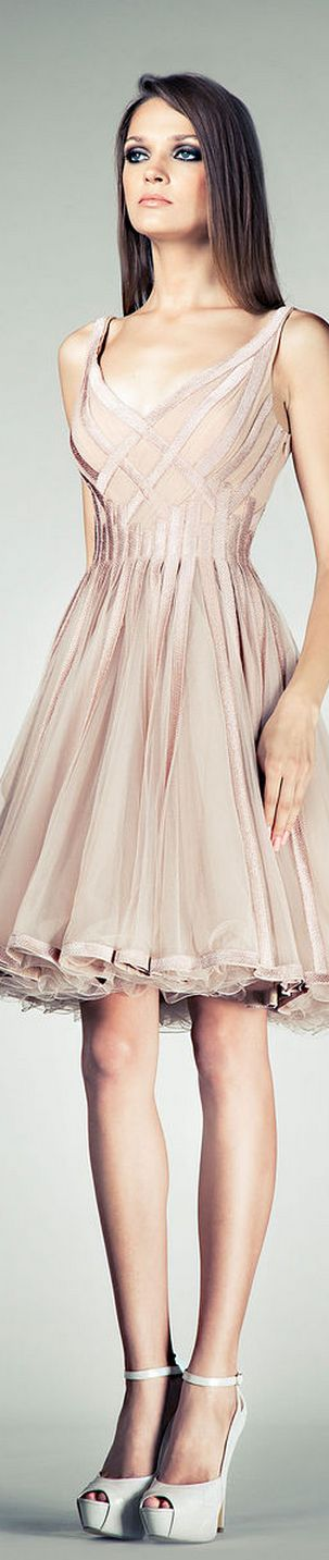 Tony Ward Spring 2014 RTW  This would also be striking in other colors