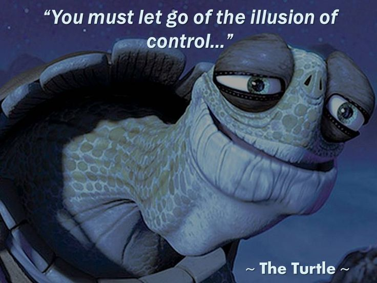 Image result for kung fu panda inner peace turtle
