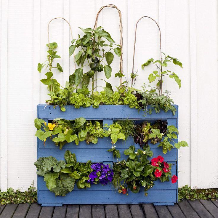 Create your own pallet garden #reclaimthat #Sarah_Heeringa