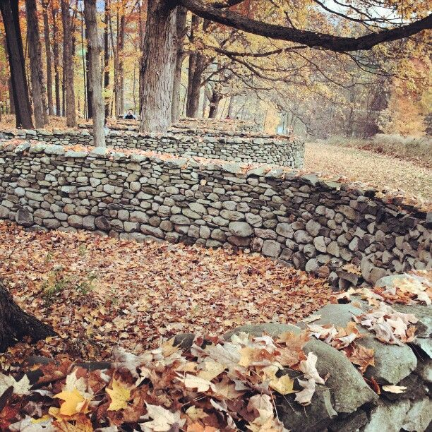 Andy Goldsworthy Most Famous Piece | Andy Goldsworthy's Winding Stone Wall