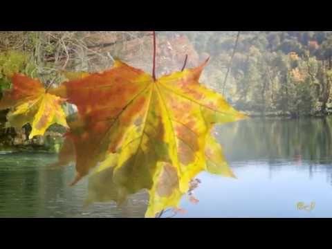 *** Ernesto Cortazar  - The Lake and I - ***  ( Wonderful music )