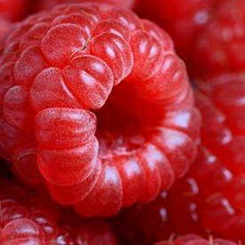 still life food product raspberry fruit macro