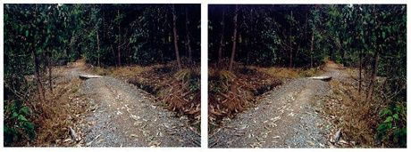 Ann Shelton - Doublet http://christchurchartgallery.org.nz/collection/objects/2004-54a-b/