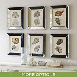 Shells in Mirror Frame Art
