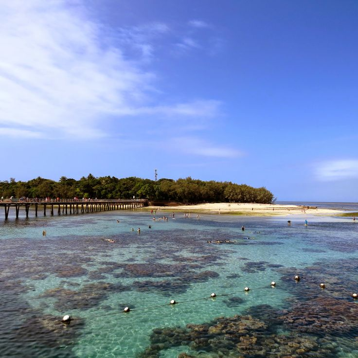 Visiting the Great Barrier Reef with kids