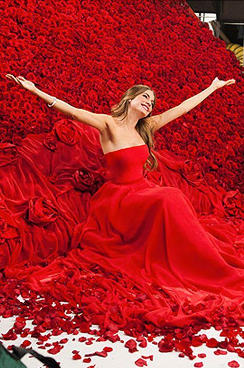 """Modern Family"" TV Star and CoverGirl spokesmodel, Sofia Vergara wears Romona Keveža - CoverGirl TV Ad"
