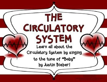 """Learn all about the Circulatory System by singing to the tune of """"Baby"""" by Justin Bieber!"""
