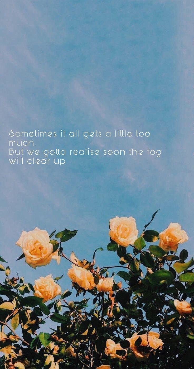Shawn Mendes Lyric Wallpaper Aesthetic Iphone Wallpaper Flower Aesthetic Summer Wallpaper