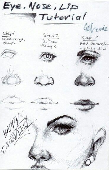 Eye, Nose, and Lip