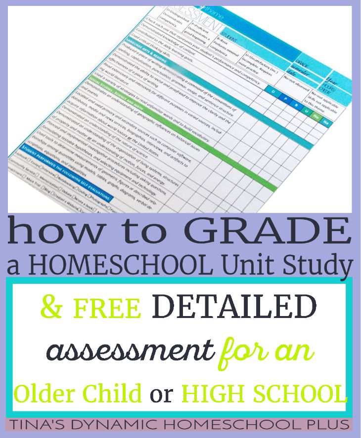 Homeschooling and Online Education - State