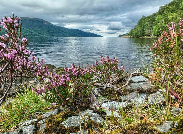 Whitebridge - Looking up Loch Ness towards Inverness - Scotland.
