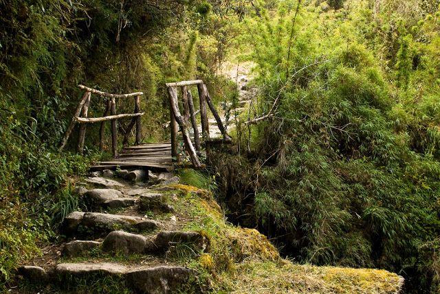 Warmiwañusca Camino del Inca, Perú