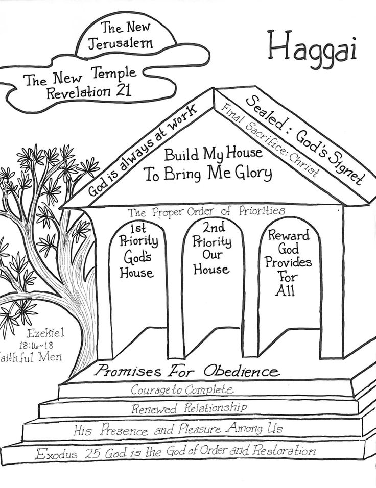 Haggai illustrated bible study notes in 2020 bible