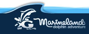 Marineland Dolphin Encounters St Augustine Fl General
