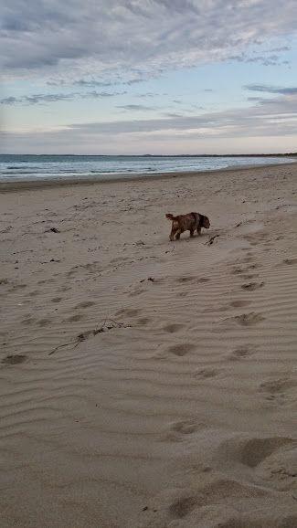 Long Beach, Robe South Australia