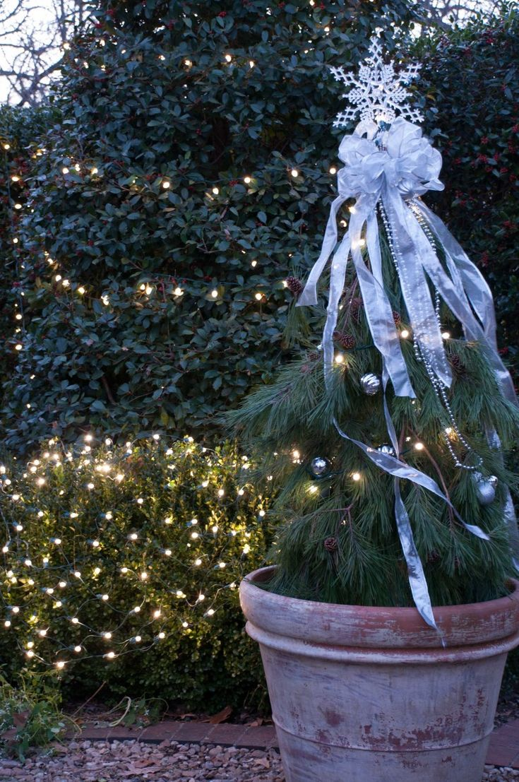 Tomato Cage Christmas Tree - Fun and Easy Holiday DIY   P. Allen Smith