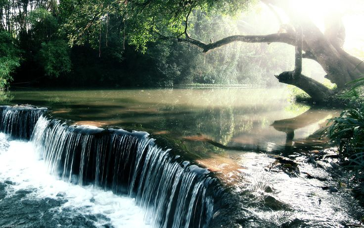Discovery.Water, Nature, Cool Wallpapers, Beautiful, Rivers T-Shirt, Places, Desktop Wallpapers, Amazon Rivers, Rainforests Creek
