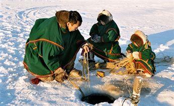 Жители Ямала очень просят снять запрет на вылов муксуна