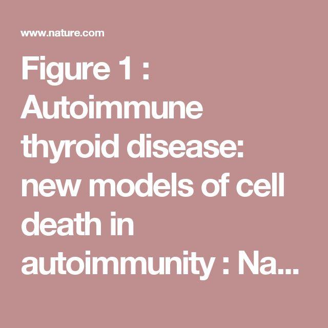 Figure1 : Autoimmune thyroid disease: new models of cell death in autoimmunity : Nature Reviews Immunology