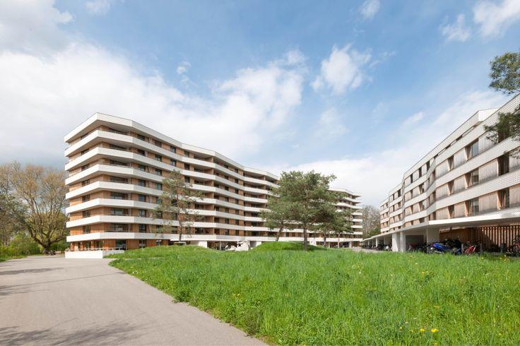 gigon  guyer . Housing Development Zellweger-Areal . Uster (1)