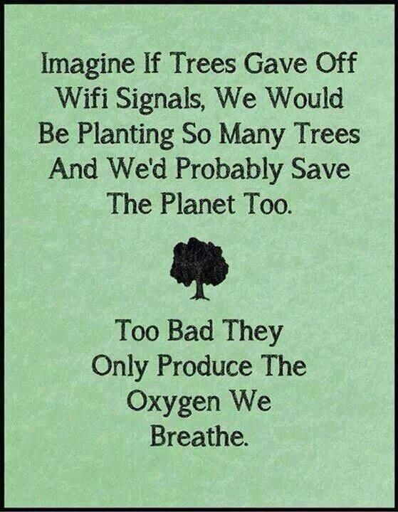 Imagine if trees gave off wifi signals..