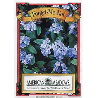 Forget Me Not Seed Packet | Myosotis sylvatica | Unique Eco-Friendly Favors, Fast Delivery - - - MKT idea