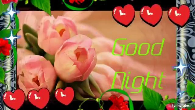 Whatsapp Video Good Night Video Download For Whatsapp Good Night Video Download Flower Desktop Wallpaper Good Night Song