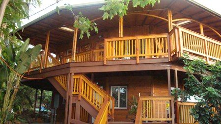 Modern Bamboo House Blueprints Bamboo Tree Houses Modern Bamboo House Design Bamboo House Hawaii