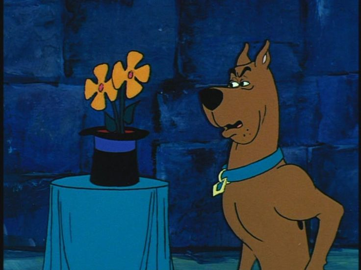 Scooby doo checks out a suspicious flower hassle in the for Hassel or hassle