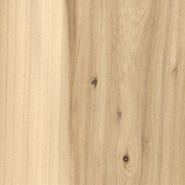 American Elm (Ulmus americana) -     Workability: Can be a challenge to work because of interlocked grain, especially on quartersawn surfaces. Planing can cause tearout and/or fuzzy surfaces. Poor dimensional stability. Glues, stains, and finishes well. Responds well to steam bending, and holds nails and screws well.