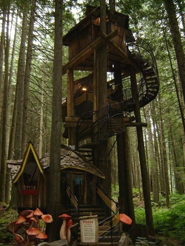 40 best awesome tree houses! (: images on pinterest | architecture