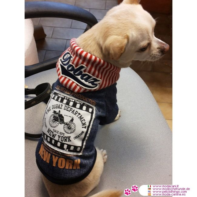 New York Blue Hoodie for Small Dog #PetClothings #Chihuahua - Blue hoodie designed for a small dog (chihuahua, poodle, jack russell, ..); it is a sweatshirt in heavy cotton, very soft and warm, with snaps