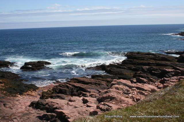 Chamber Cove, Newfoundland