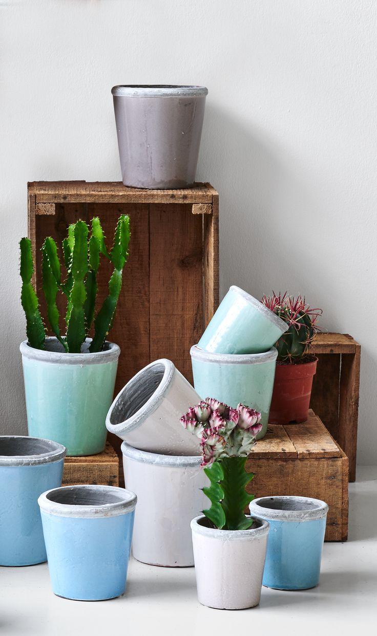 Tag den nye trend med hjem. Brug de dekorative kaktusser og sukkulenter rund om i dit hjem og skab en lækker botanisk følelse. #kaktus #sukkulenter #inspirationdk #bolig #botanik #trend #boligtrend