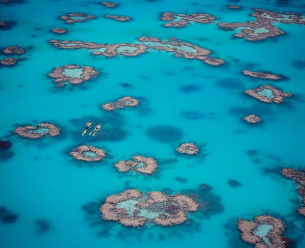 Invierno en la Gran Barrera de Coral de Australia