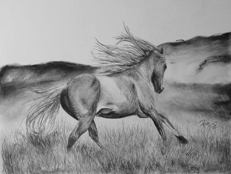 Horse running by NotOKFun on DeviantArt