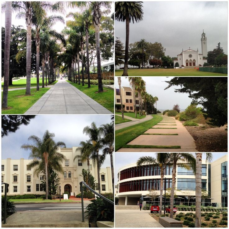 Loyola Marymount University (LMU) - in Los Angeles, California