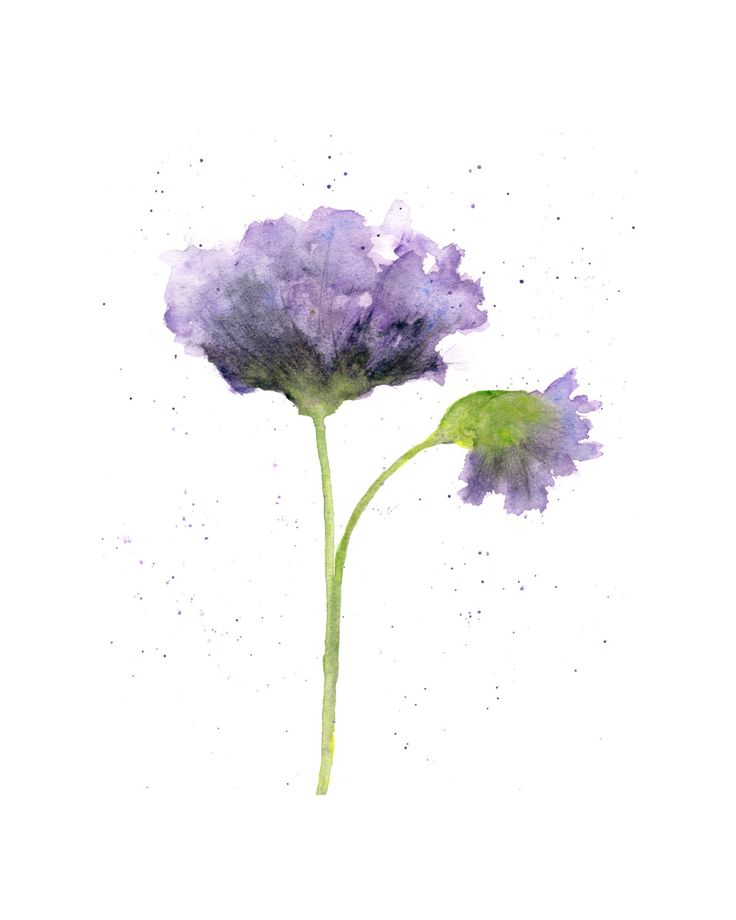 Watercolor flower, flower art, watercolor poppies, abstract flower painting, purple, botanical, original painting - 8X10