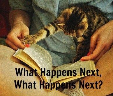 What happens next??