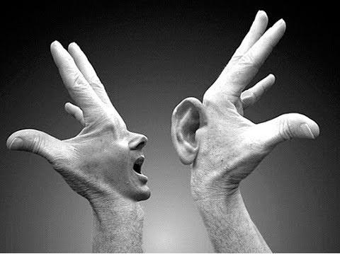 La escucha activa es la fuente de información más fiable para las empresas