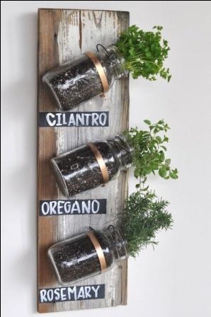 jardin herbes aromatiques
