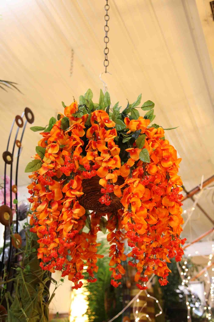 Orange Wisteria Hanging Basket Evergreen At The Lake Of The Ozarks Home Decor Store Www