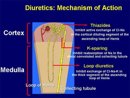 What is the drug lasix used for