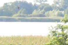 Gdzie spędzić udany weekend?  www.agroturystyka-skulsk.pl, www.agroturystyka-skulsk.pl/oferta, www.agroturystyka-skulsk.pl/okolica,