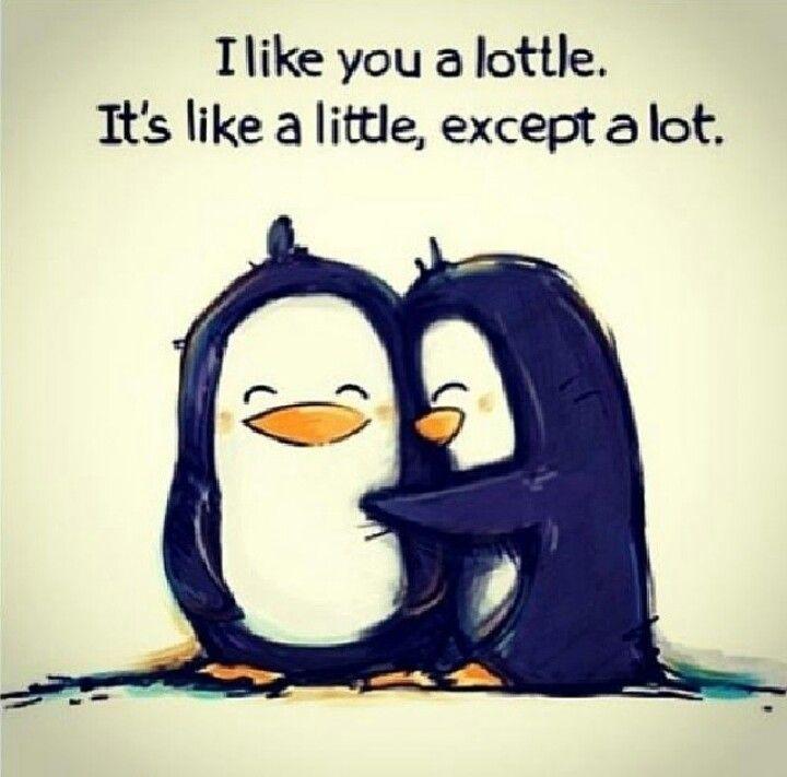 So cutes!!!