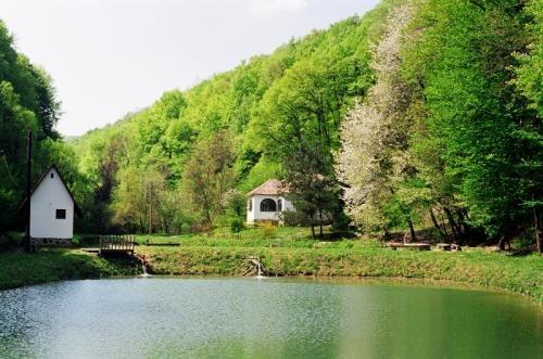 Duna-Dráva Nemzeti Park, Magyarország. 1996-ban alapították. A víziturizmus népszerű úticélja.