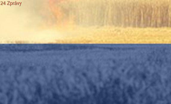Na Tachovsku hoří pole, hasiči drží oheň na kraji lesa