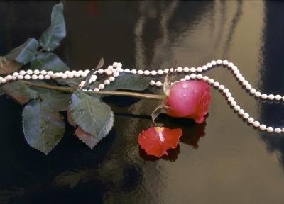 5 Gifts of Death  Rose and pearls